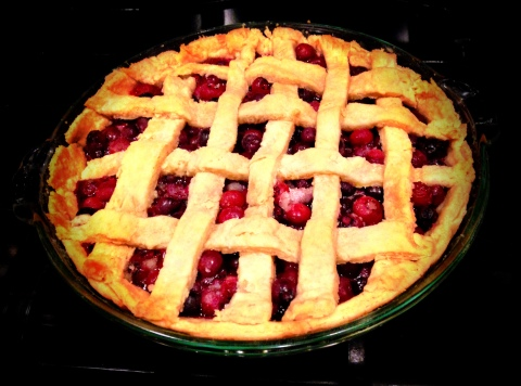 We picked too many blueberries to eat, so I made a pie!